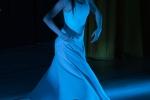 Frýdlantský večer tance 2013 - 2