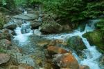 Krkonošský potok