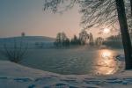 Tichavský rybník